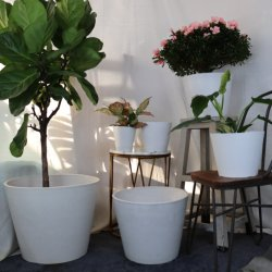 家の装飾プラスチック円形の花の火鍋は石が付いている 屋内および屋外の庭のプランターのための効果