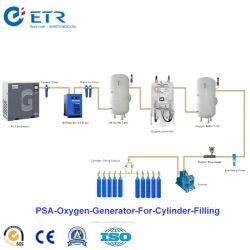 Psa van het Ziekenhuis van de Cabine van de Vervaardiging van China de Medische Installatie van het Gas van de Zuurstof voor het Vullen van de Cilinder
