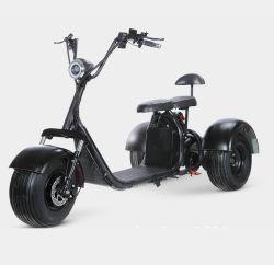 48V 60V 12ah 20ah fette Gummireifen-elektrische Roller-Fahrrad-Fahrrad Citycoco Batterie-elektrisches Fahrrad 1500W 2-3wheels