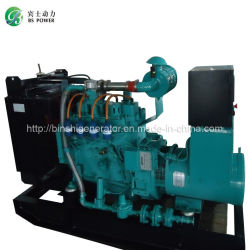 500kw 300kw 200kw 100kw 50kw 30kwの天燃ガスの生物量のBiogas LPGのガスの電気発電機
