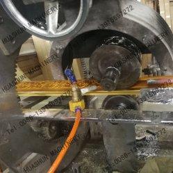 Prêt de nouvelles machines de moulage par synthétiques en plastique pour PS Profil de la tête d'estampage à chaud la machine