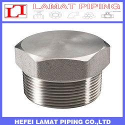 Acero inoxidable de alta presión/tubo de acero forjado de acero al carbono en el montaje y el tapón hexagonal