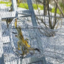 Edelstahl geknoteter Drahtseil-Ineinander greifen-Zoo-Ineinander greifen-schützender Zaun