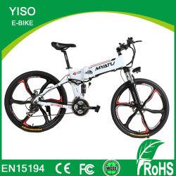 36V/48V完全なSuspentionのマグネシウムの車輪山の電気E自転車を折る750With1000Wによって隠される電池のハンマー