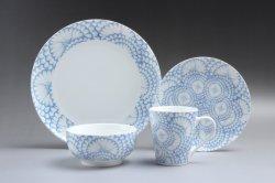 Insieme di pranzo di ceramica del padellame del piatto della porcellana fine elegante