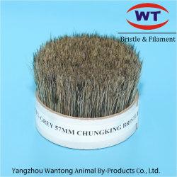 Chungking gris de cerdas naturales cocidos