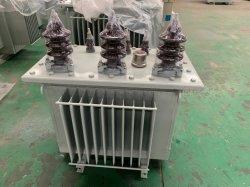 Jsm S9-100kVA/11kv transformateur d'immersion d'huile de transformateur de distribution