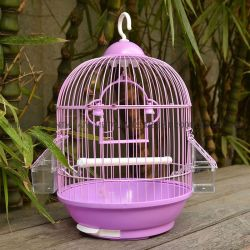Aço inoxidável e revestimento de PVC Round Gaiola de pássaros para venda