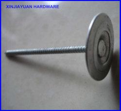 Anneau de clous de toiture de queue de fixation en acier de maçonnerie clou bouchon rond en métal