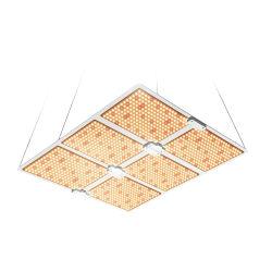 La serra d'agricoltura dell'interno LED si sviluppa chiara per lo spettro completo per il coltivatore