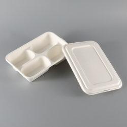 Piatto dei vassoi degli scompartimenti biodegradabili a gettare ecologici dell'alimento 4 e del vassoio dei coperchi