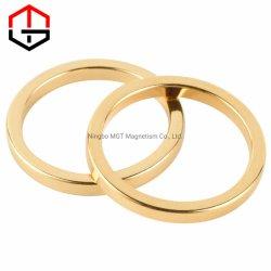 Sinterde de Magnetische Zeldzame aarde van NdFeB de Permanente Ring van de Magneten van het Neodymium N35