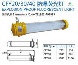 Cfy20-2 explosionssicheres Leuchtstoffmarinelilght