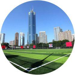 De kunstmatige Prijzen van het Gras voor het Synthetische Gras van de Hoogten van de Voetbal