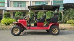 De Verhuizer van de Persoon van de Patrouillewagen van de goede die Kwaliteit voor Tuin/Hotel/Villa wordt gebruikt
