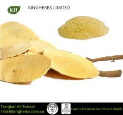 100% naturel Tongkat Ali extrait 1 %, 2 % Eurycomanone HPLC