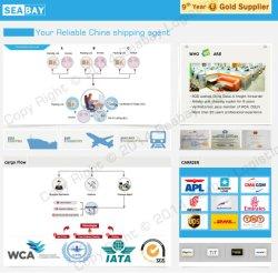 Consoliation LCL를 위한 Seabay Warehouse Service