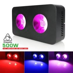 Rouge Bleu Full Spectrum 500W COB croître Panneau lumineux à LED