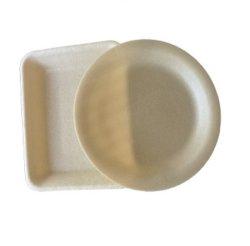 Nuevo material del producto en envases de plástico para la fruta planta bandejas