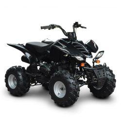 성인을%s 150cc 가스 ATV 쿼드