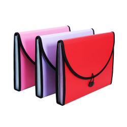 A4 sacchetto espandentesi Pocket di caso dell'organizzatore del documento del dispositivo di piegatura di archivio della plastica 13 della gomma piuma pp