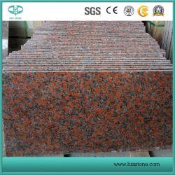 Granito rosso dell'acero G562 per le parti superiori/parete/pavimento/punti vanità/del controsoffitto
