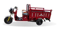 La nueva movilidad plegable de tres ruedas de carga eléctrica de tres ruedas para adultos