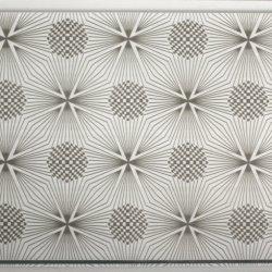 A decoração de interiores em madeira laminado cor do painel de parede de gesso forro de PVC de instrumentos