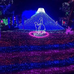 2020 [نو برودوكت] خارجيّة مسيكة عطلة يزيّن مهرجان الحافز [لد] عيد ميلاد المسيح خيط أضواء