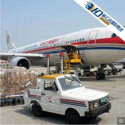 Best DHL 、 UPS 、 TNT 、 FedEx 、 EMS の安価な輸送業者物流貨物取り扱い業者からバングラデシュ / ネパール / ニューカレドニアのドア・ツー・ドアまで