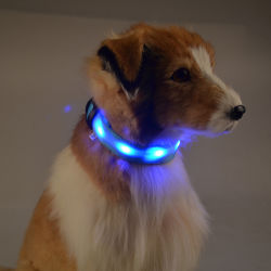 Fashion Candy Col DEL de couleur clignotant LED en nylon Collier pour chien accessoires pour animaux de compagnie