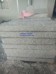 Unión barata G603 de la empalizada Bianco Sardo de granito gris claro borde curvo, curvas y granito Curbstone Palisade