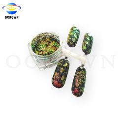 Хамелеон цветовой сдвиг в силу Блестящие цветные лаки порошок изменение цвета Cameleon хлопья для лак для ногтей искусства