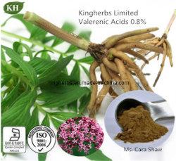 Valerian extrato de raiz de alta qualidade - Ácidos Valerenic 0,2% - 0,8%; HPLC 4: 1
