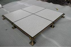 Het opgeheven Centrum van de Gegevens van het Comité van het Staal van het Cement van de Toegang Floor/HPL /PVC Opgevulde
