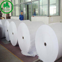 Venta caliente blanco sin estucar Woodfree el papel Offset/Bristol/papel de Libro de papel de China