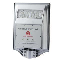 30Wは1つの太陽LEDランプライト装飾の照明通りの省エネのパワー系統のホーム電球のプールの統合ライトのすべてを統合した