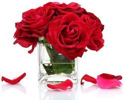 공장 공급 Hydroponic 플랜트 꽃 정연한 유형을%s 가진 유리제 남비 화병 촛대