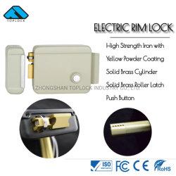 Verrou électrique de commande de verrouillage électronique pour l'accès système de sécurité (TL1073-SL-yl-L)