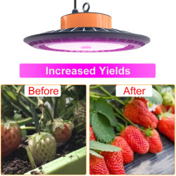 [250و] ينمو تجويف صغير فائقة عال [لد] ضوء لأنّ معمل ينمو