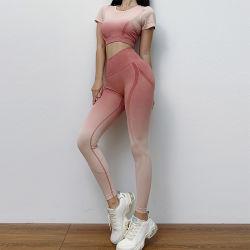 As mulheres as mulheres de desgaste de manga curta exercício conjunto de ioga desgaste activa o desgaste de ioga Athletic Suit Conjunto Sportswear Fitness