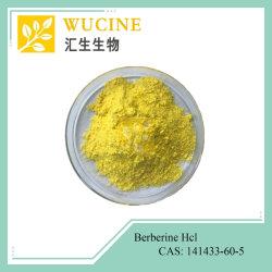 Farmaceutische Grade Berberis aristata Extract Berberine HCl 97% Berberine Hydrochloride