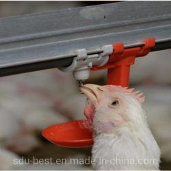 Bevitori automatici di nipple con coppetta antigoccia per pollo Sistema agricolo