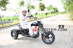 2020 nuovo migliore 60V EEC di vendita 3 elettrici motorino dell'adulto di Trike Citycoco del motociclo delle tre rotelle