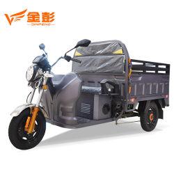 Tricicli elettrici del carico del EEC con il motore 1000W