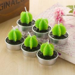 Cactus artificiales Velas Velas de la planta verde Mini Cactus proveedor velas