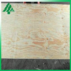 Revêtement de mur extérieur de contreplaqué de résineux de grade Pine CDX