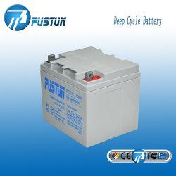 Libre de mantenimiento de la batería de gel de alta calidad para el Sistema Solar