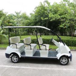 Transporte de passageiros 8 Veículo Seaters Electric Sightseeing Car (DN-8)