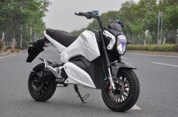 Alta Qualidade Horizonte Fornecedor Marcação Original Entrega Verde Motociclo eléctrico para venda Mz-119